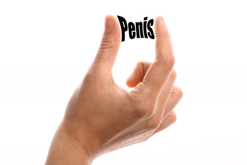 petit pénis
